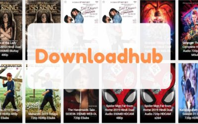 DownloadHub – 300MB Dual Audio